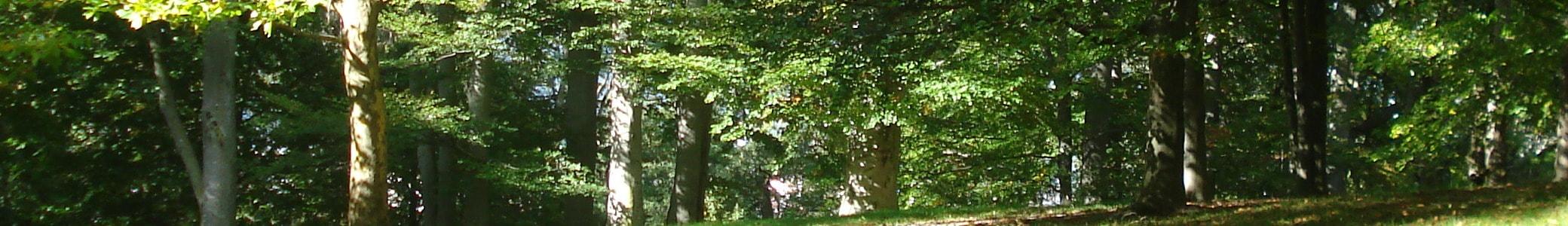 Obst- und Gartenbauverein Straubing e.V.